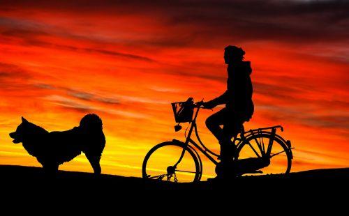 Woman & Dog Sunset