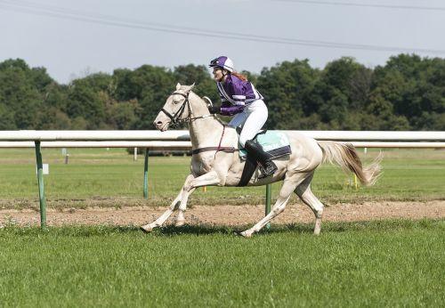 ride horsewoman women's power