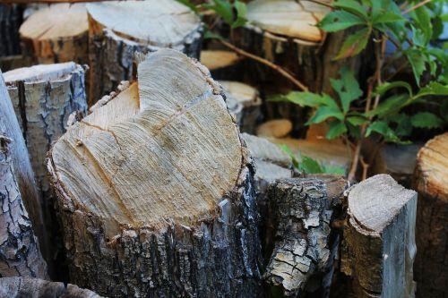 wood timber log