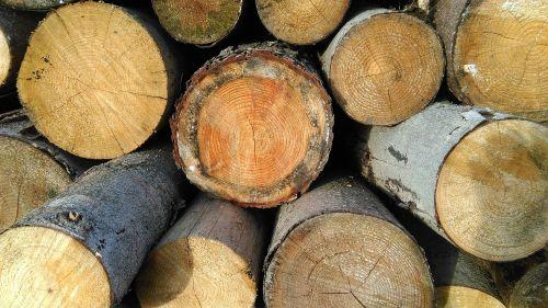 wood stack firewood
