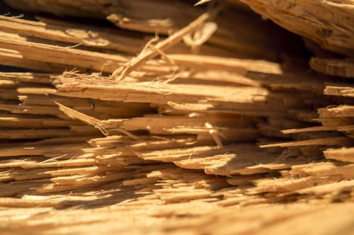 mediena,kietėjimas,lena,bagažinė