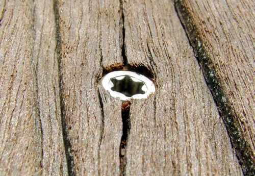 wood screw brown