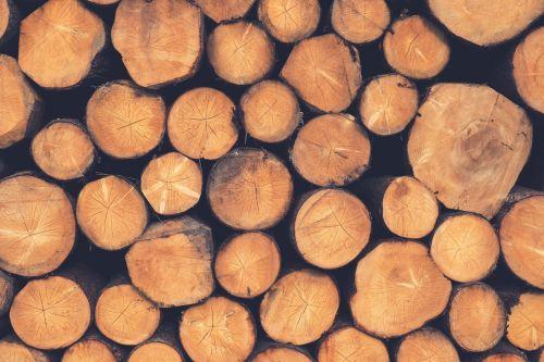 mediena,rąstai,mediena,woodpile,malkos,mediena,industrija,miškų naikinimas,medienos ruoša,medinis