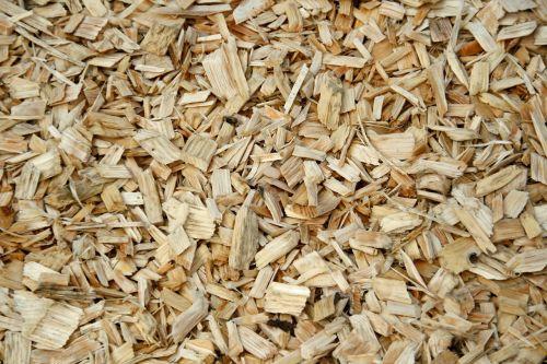 wood background schnitzel