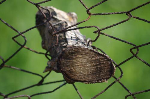 wood fence jammed