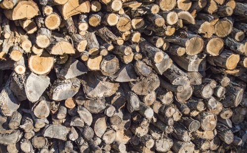 wood firewood wood pile