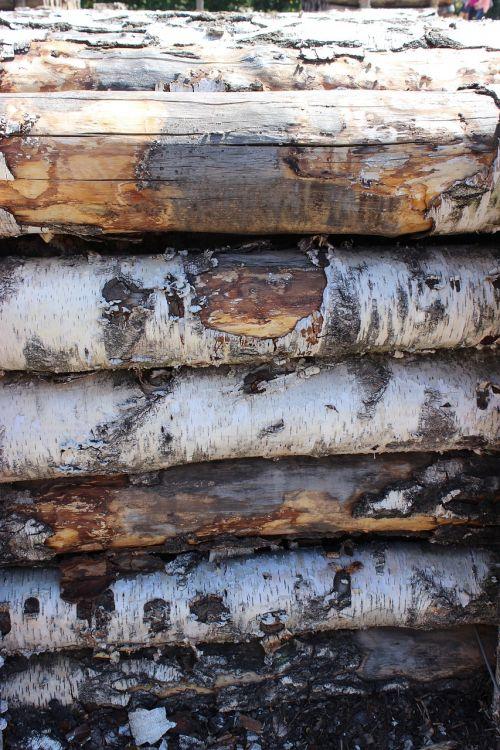 wood wood trunks log