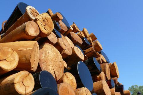 wood energy heat