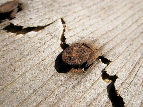 wood pua oxide
