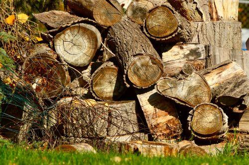 wood pile woodpile