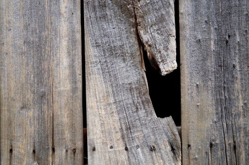 wood wooden wall wooden boards
