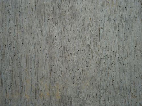 wood moldy rot