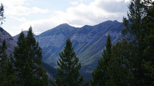 wood mountain canada