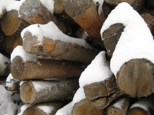 wood logs close up on the logs