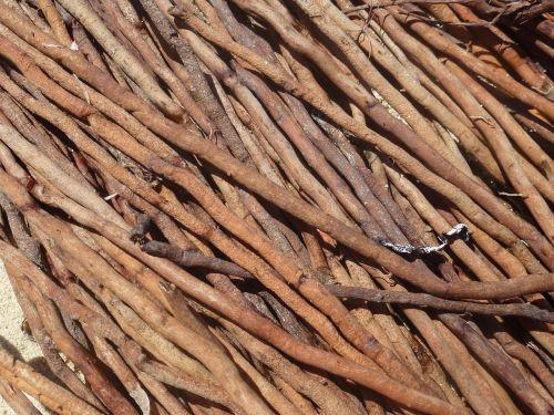 wood root drift wood