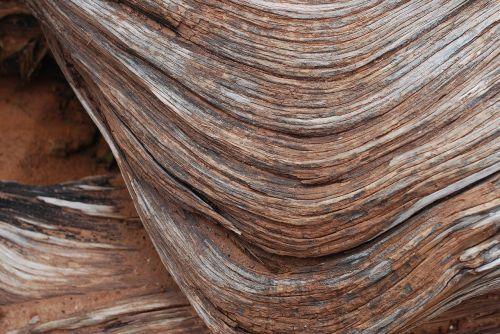 wood wood texture texture