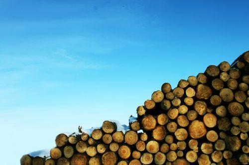 wood logging blue