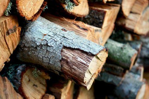 wood firewood winter
