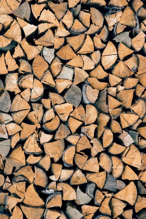 wood trunks tree trunk