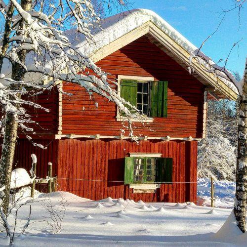 wood house bungalow