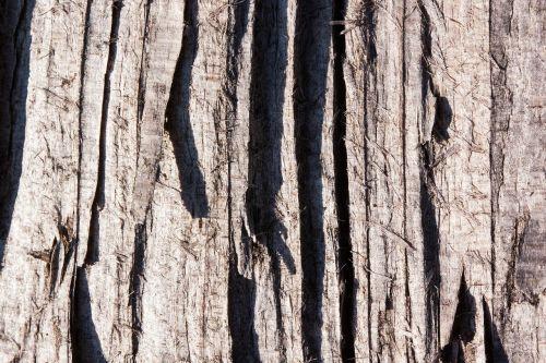 wood structure fund