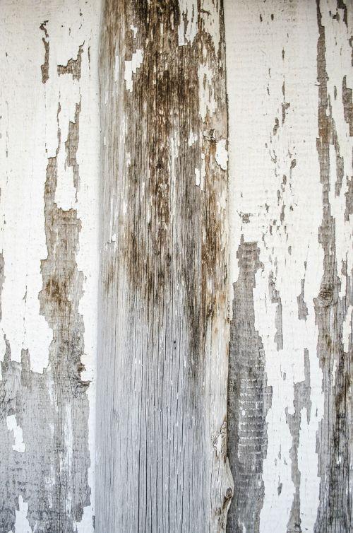 mediena,lentos,lentos iš medžio,balta lenta,baltos lentos,medienos,medienos tekstūra,Grunge,balta mediena,dažyti,balti dažai