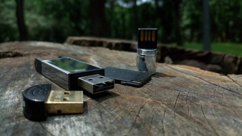 wood outdoors usb