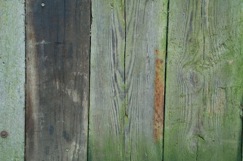 wood old pattern