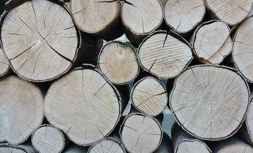 wood  commodity