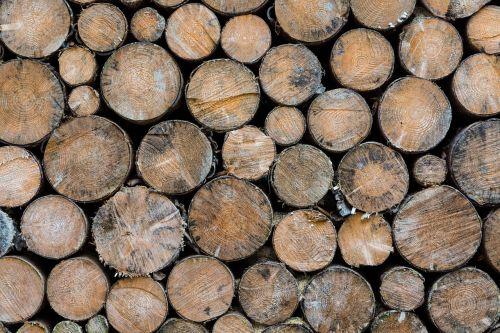 wood about spar