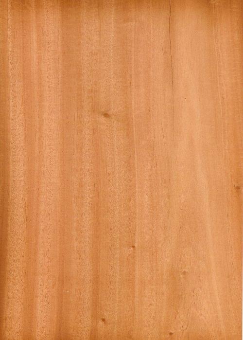 wood mahogany texture
