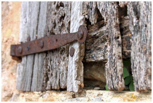 wood wood worm hinge
