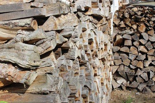 wood  log  firewood