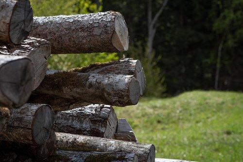 wood  wood trunks  tree trunks