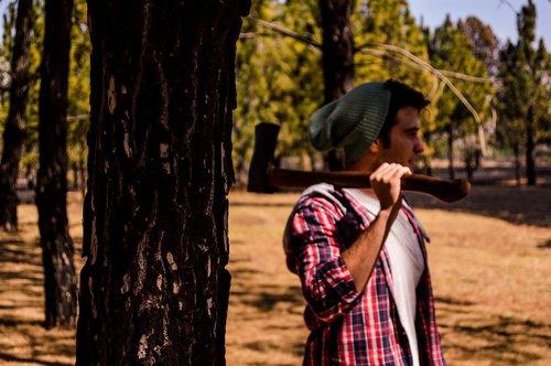 wood  axe  lumberjack