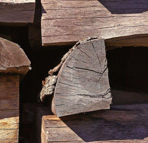 wood fuel wood logs