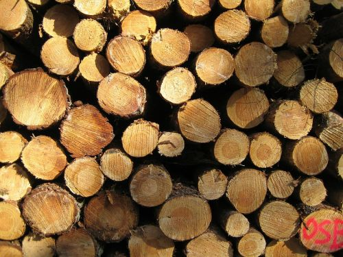 wood nature durable