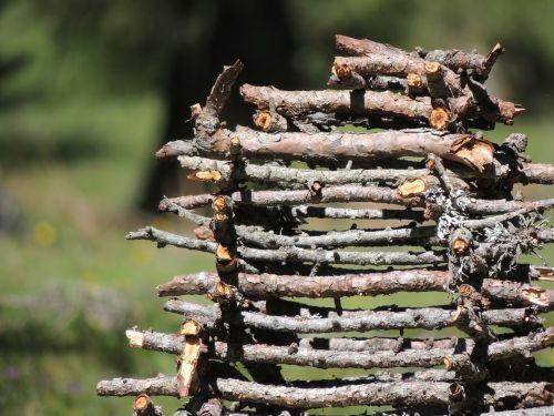 wood holzstapel firewood