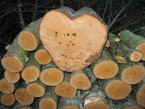wood log holzstapel