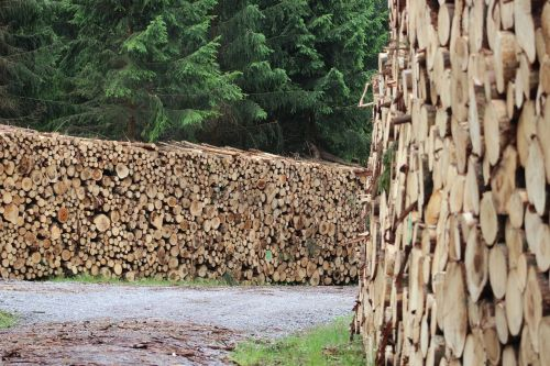 wood holzschlag timber industry