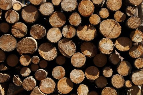 wood strains holzstapel