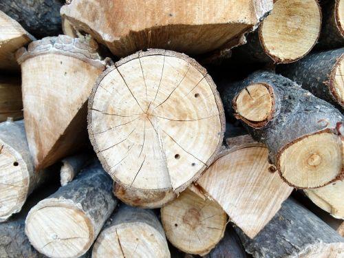 wood firewood woodpile