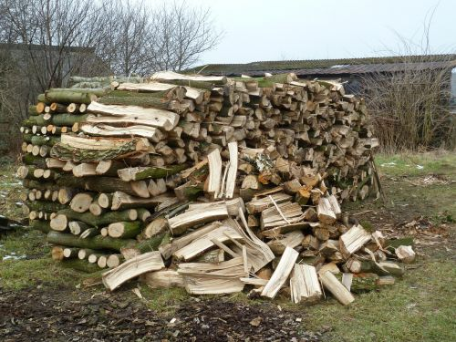 wood firewood stack