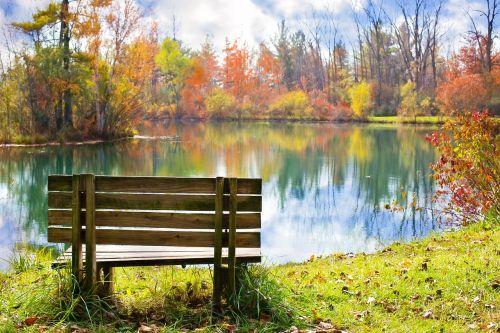 wood bench pond autumn