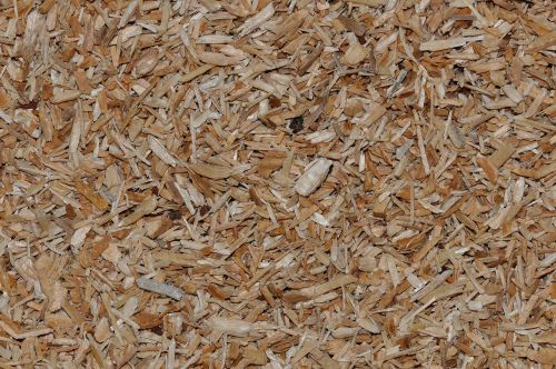 wood chips pieces of wood close