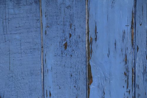 wood fence blue boards