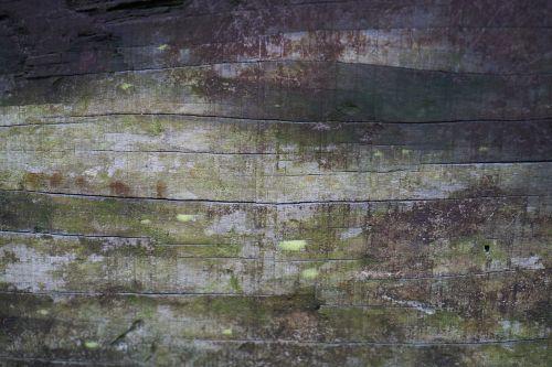 wood-fibre boards texture parquet