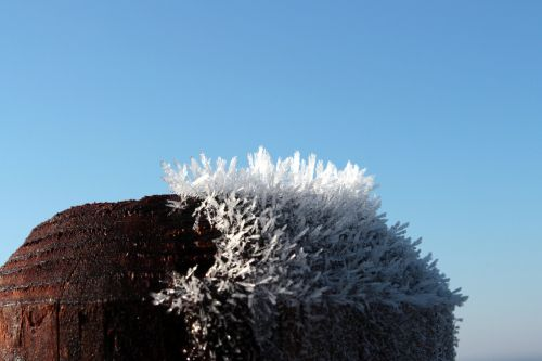 wood pile frost frozen fog
