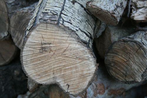 wood pile sawn wood