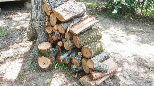 wood pile firewood wood